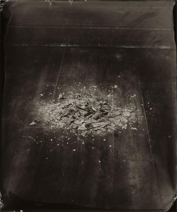 <i>Untitled (Ashes)</i>, 2008<br>