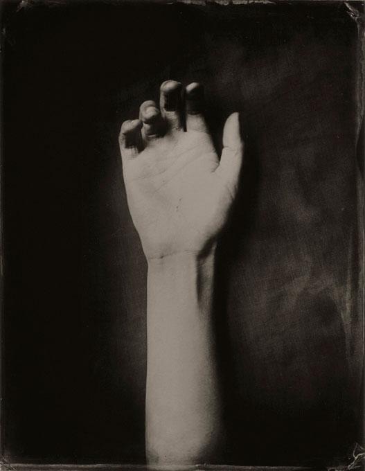 <i>Dead Arm</i>, 2006<br>