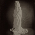 white-shroud